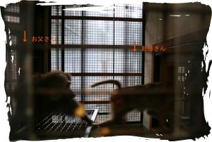 IMG_1174のコピー
